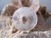 Bergkristal Donut edelsteen E0120 Per stuk