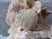 Jaspis Landschap Hart edelsteen (Plat) 4 x 4 cm